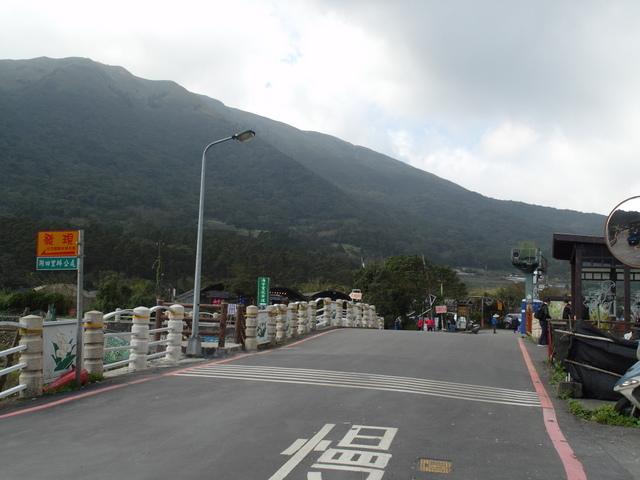 竹子湖  (5).JPG