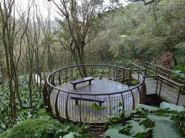 竹子湖  (9).JPG