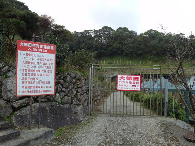 竹子湖  (17).JPG
