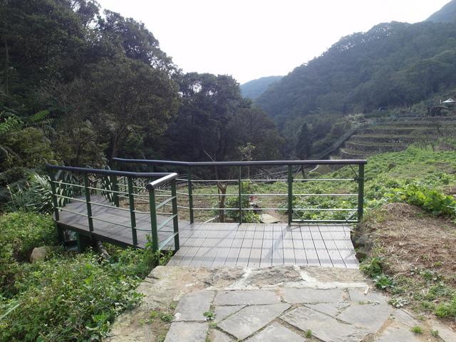 竹子湖  (27).JPG