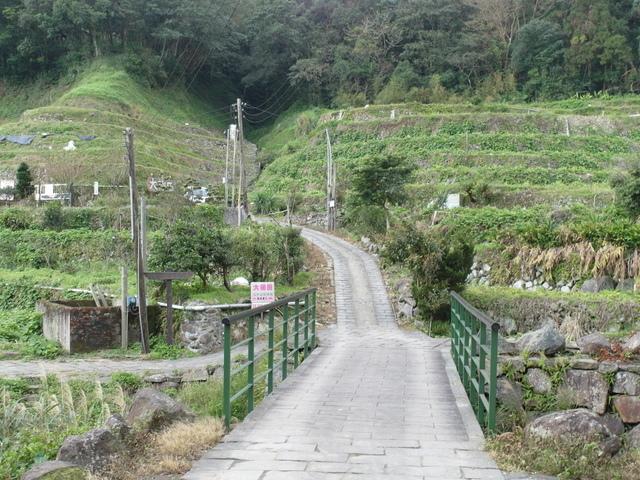 竹子湖  (35).JPG