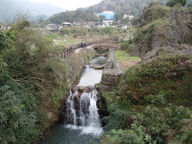 竹子湖  (46).JPG