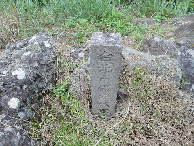 竹子湖  (48).JPG