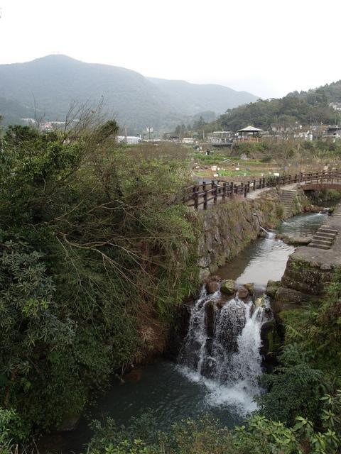 竹子湖  (50).JPG