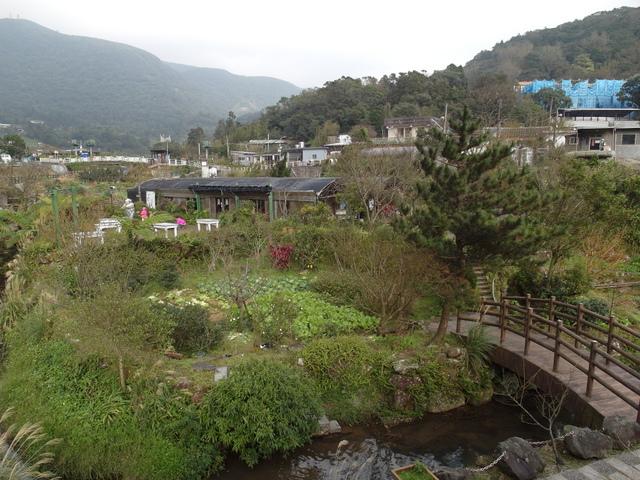 竹子湖  (58).JPG