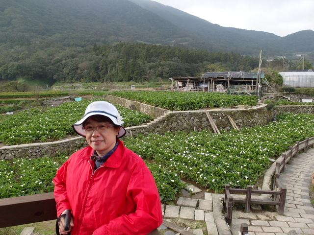 竹子湖  (59).JPG