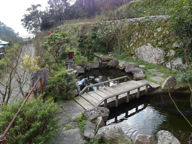 竹子湖  (78).JPG