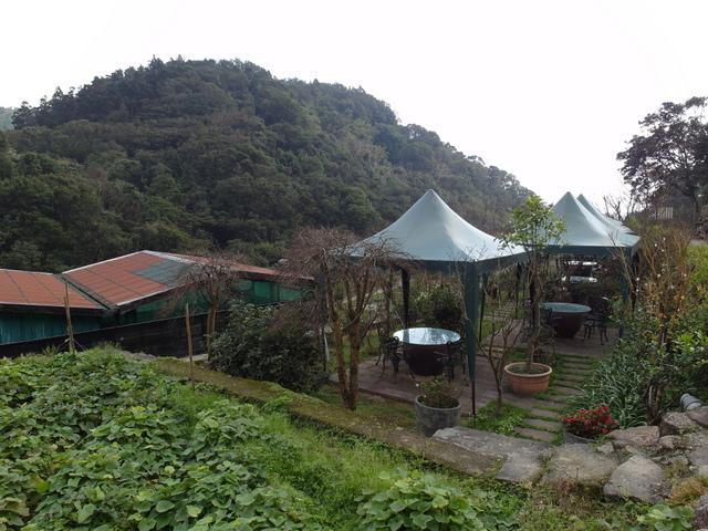 竹子湖  (79).JPG