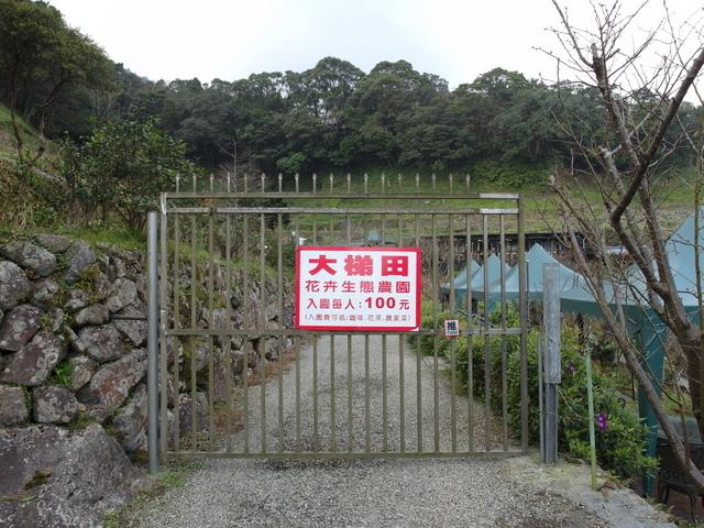 竹子湖  (80).JPG