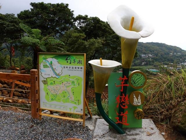 竹子湖  (86).jpg