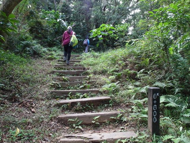 朝陽步道 (40).JPG