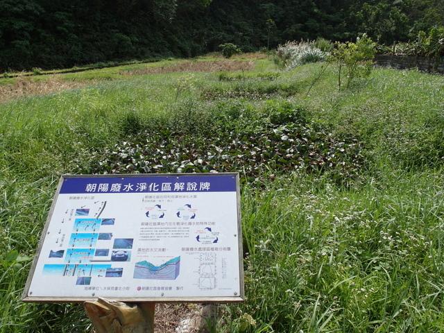 朝陽步道 (90).JPG