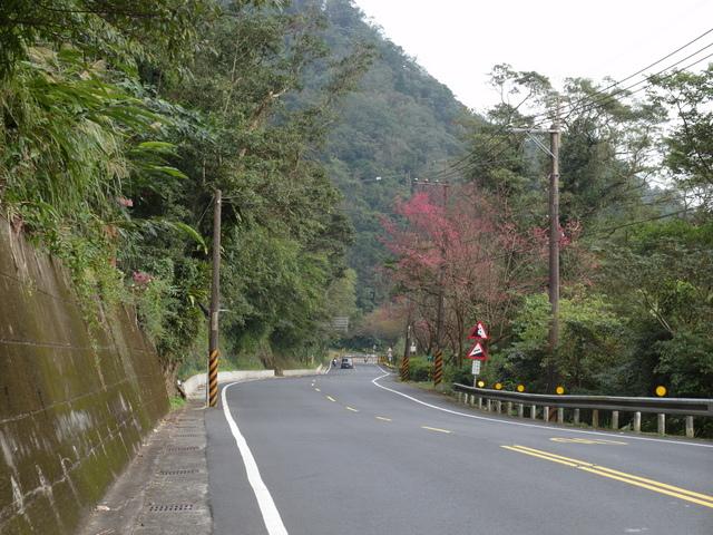 風露嘴山 (2).JPG