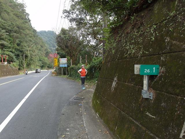 風露嘴山 (3).JPG