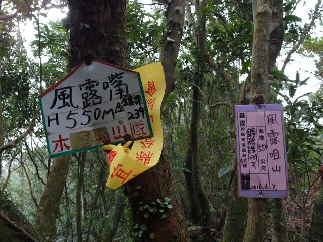 風露嘴山 (8).JPG