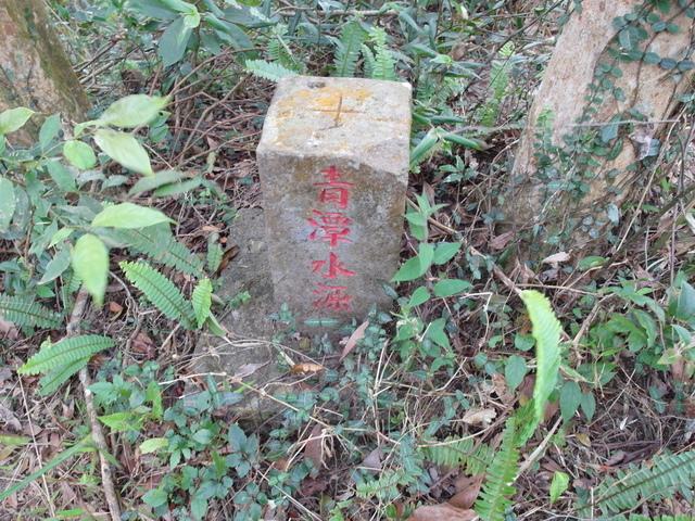 風露嘴山 (14).JPG