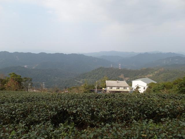 風露嘴山 (20).JPG