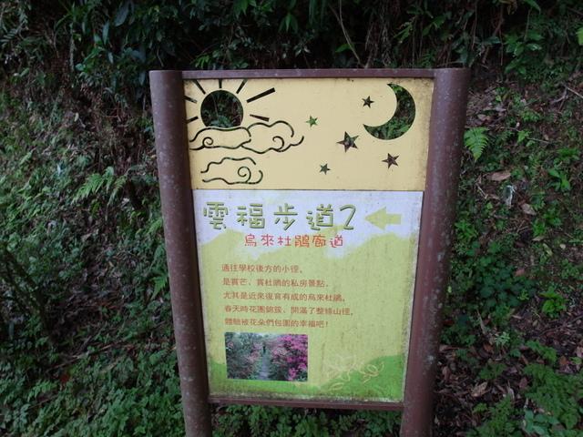 風露嘴山 (67).JPG