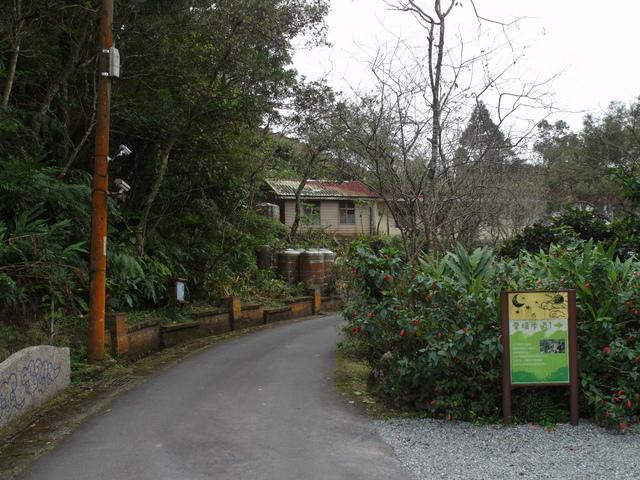 風露嘴山 (74).JPG