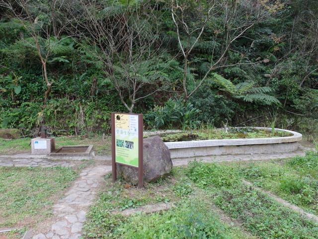 風露嘴山 (75).JPG