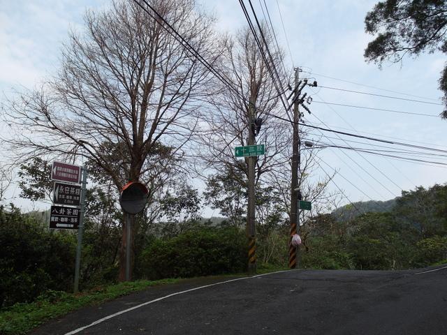 十三股山 (8).JPG