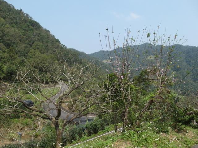 獅頭山 (70).JPG
