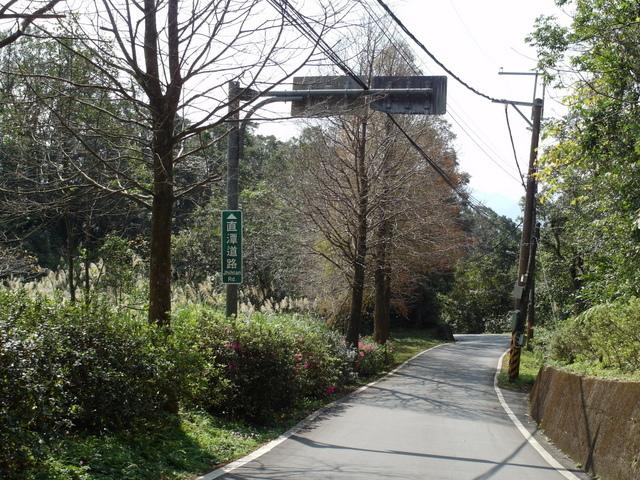 永安景觀步道 (12).JPG