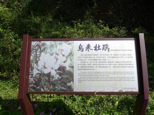 永安景觀步道 (17).JPG
