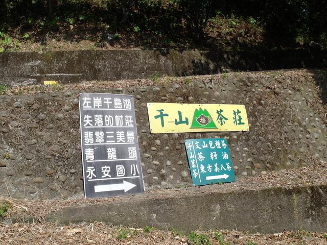 永安景觀步道 (28).JPG