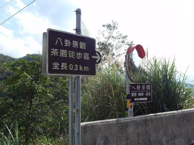 永安景觀步道 (61).JPG