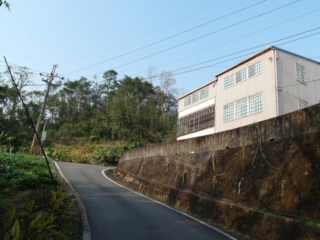 永安景觀步道 (101).JPG