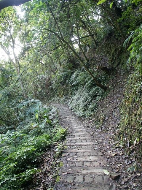 永安景觀步道 (111).JPG
