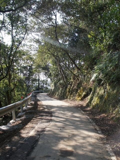 永安景觀步道 (124).JPG