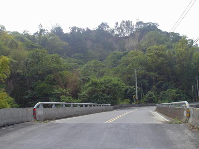 蘭科植物園  (2).JPG