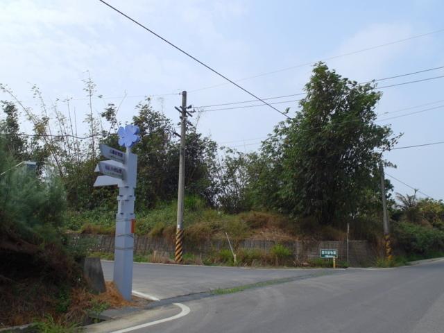 蘭科植物園  (5).JPG