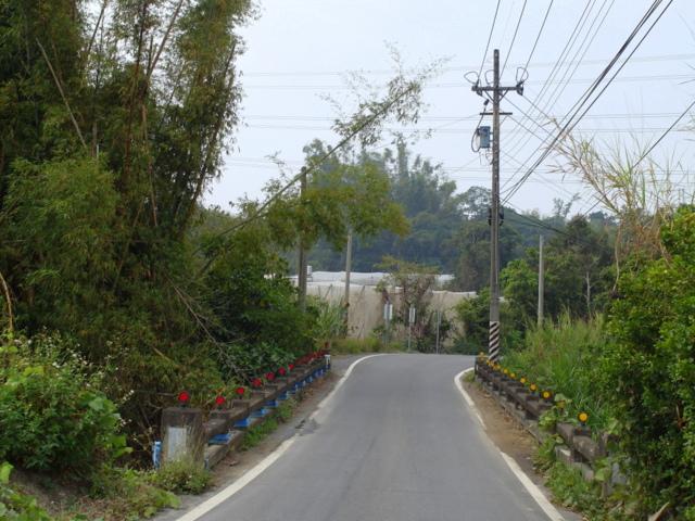 蘭科植物園  (4).JPG