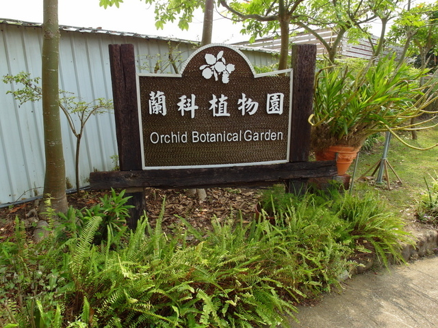 蘭科植物園  (13).JPG