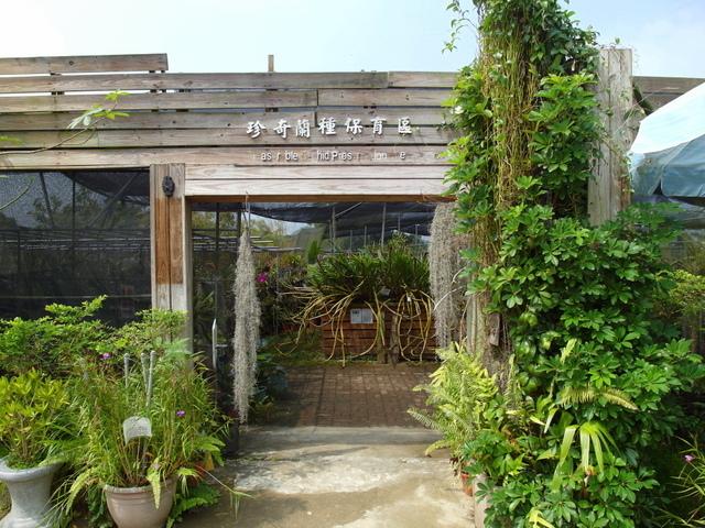 蘭科植物園  (15).JPG
