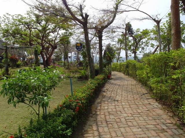 蘭科植物園  (27).JPG