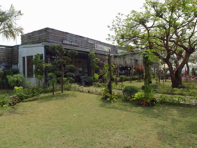 蘭科植物園  (28).JPG