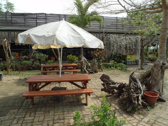 蘭科植物園  (33).JPG