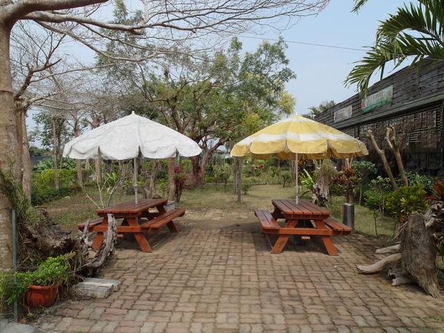 蘭科植物園  (35).JPG
