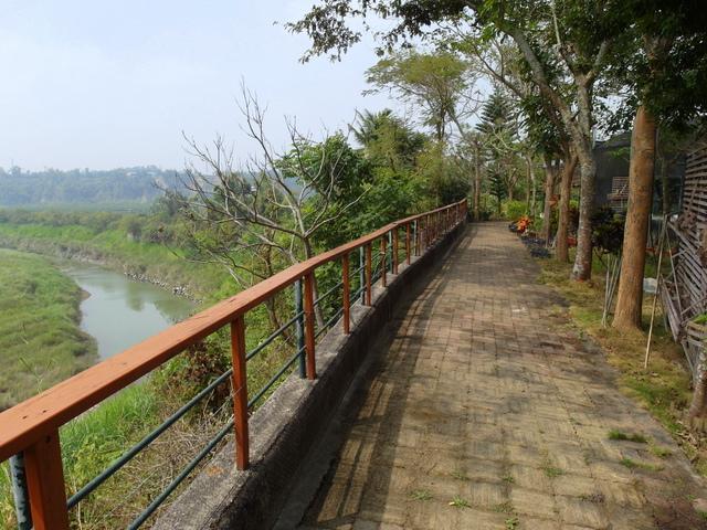 蘭科植物園  (39).JPG