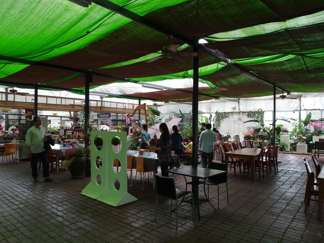 蘭科植物園  (43).JPG