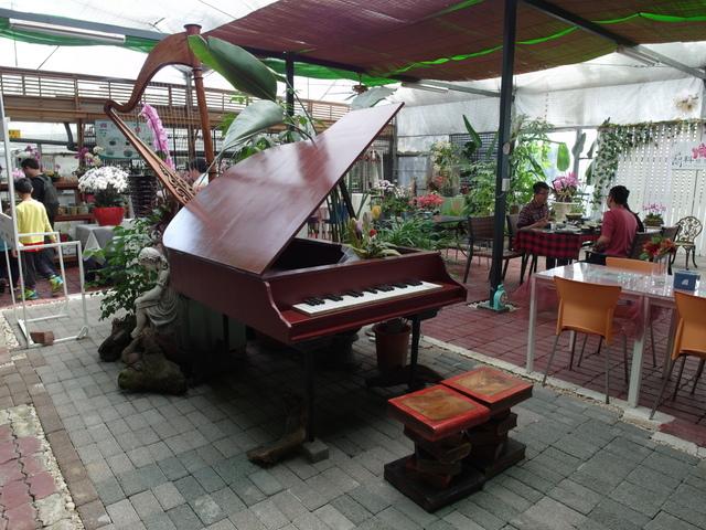 蘭科植物園  (44).JPG