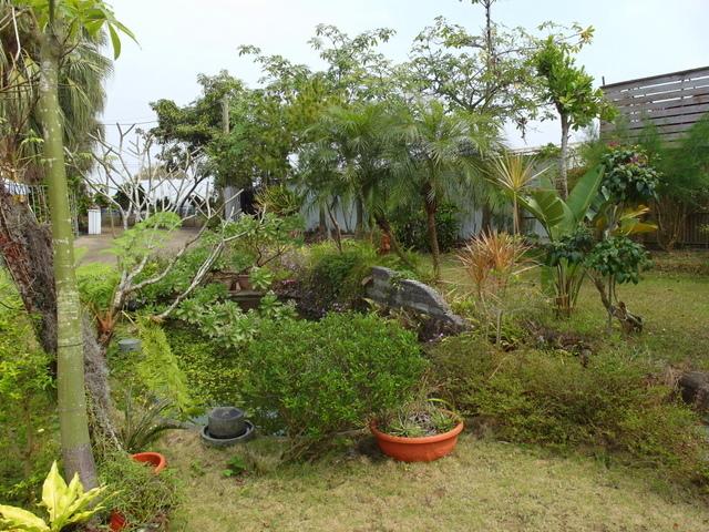 蘭科植物園  (54).JPG