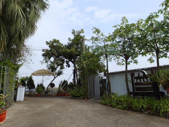 蘭科植物園  (56).JPG