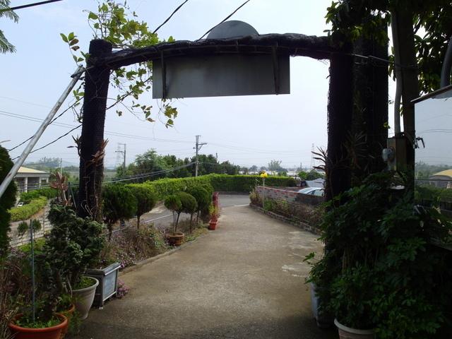 蘭科植物園  (57).JPG