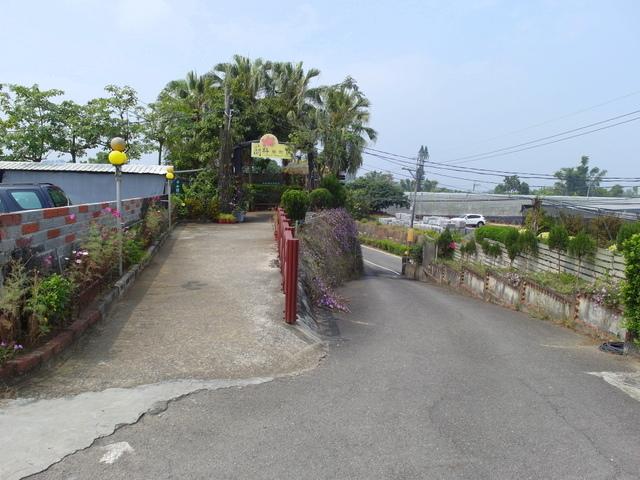 蘭科植物園  (59).JPG