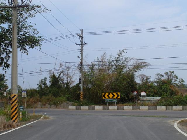 蘭科植物園  (62).JPG